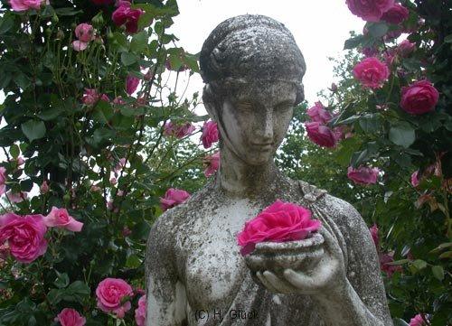 Romantische Statue im Rosenneuheitengarten