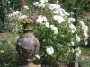 La Roseraie, der Rosengarten in Saverne