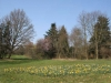 Frühling auf der Rosenhöhe, Darmstadt